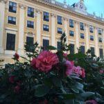 Schönbrunn palat
